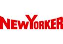 logotyp sklepu odzieżowego new yorker